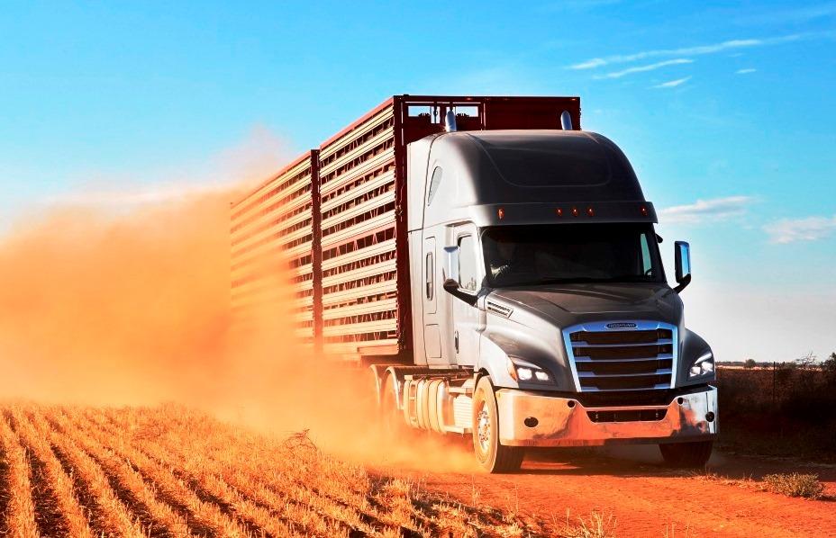 Фрейтлайнер, Каскадия, Freightliner Cascadia , Константин Закурдаев, австралийский автопоезд, СТ-КТ, грузовики австралии, суперавтопоезд