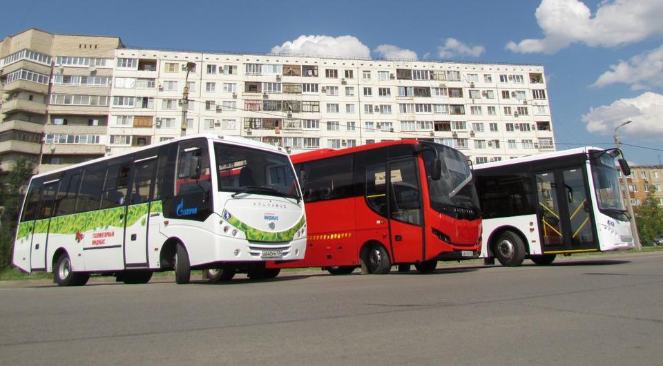 VOLGABUS. Цель – экспорт и двукратный рост