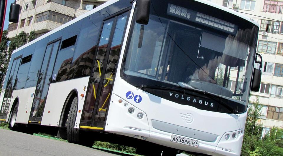 Volgabus пробился на маршруты Калининграда