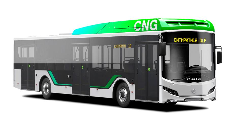 Volgabus снова поставит автобусы в Санкт-Петербург