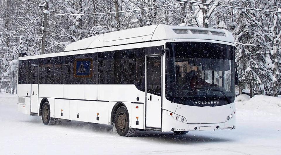 Volgabus: контракты ноября