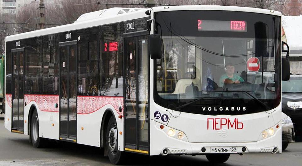 Volgabus поставит городские автобусы в Пермь