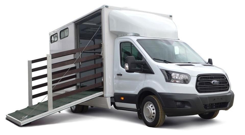 Ford Transit для перевозки лошадей